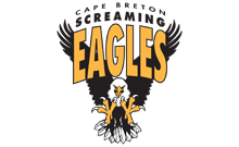 screaming eagles logo
